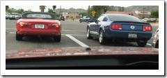 Jaguar Mustang