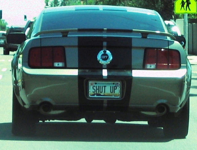 Ford Mustang GT Shut Up